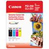 Ensemble de cartouches PGI-250 noire et CLI-251 CMJ de Canon - Paquet de 4