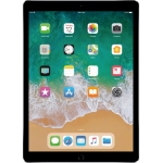 Apple iPad Pro 2nd Generation Wifi ONLY 12.9 inch 256GB in Gray, Refurbished