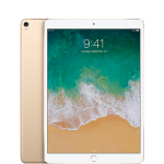 Apple iPad Pro 2 Second Generation 10.5in Wifi + 4G 64gb in Gold [OPEN-BOX Unused without Original Packaging]