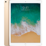 Apple iPad Pro 2 Second Generation 12.9in Wifi + 4G 64gb in Gold [OPEN-BOX Unused without Original Packaging]