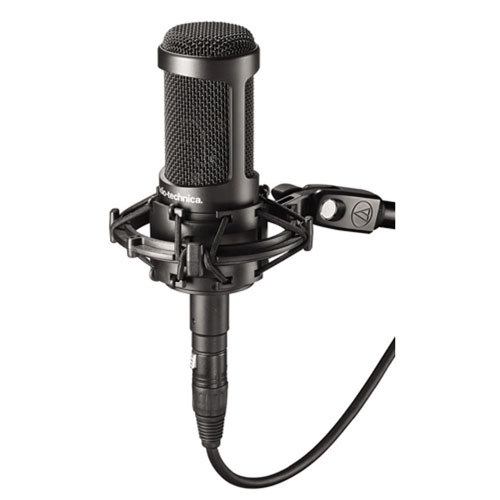 Audio-Technica Multipattern Microphone (AT2050)