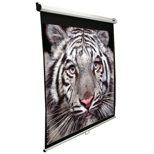 Elite Screens 99-Inch Manual Projection Screen (M99NWS1)