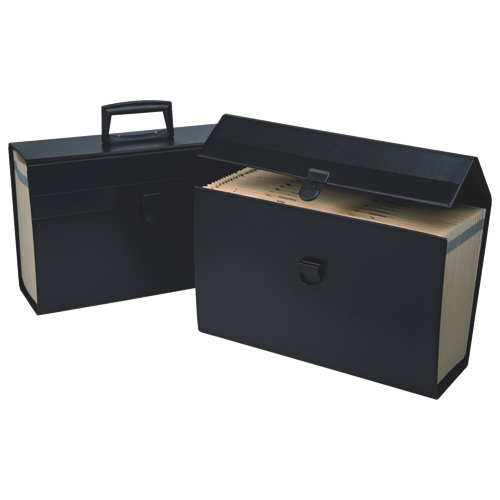 Boîte de rangement portable Home d'Esselte (ESS01156)