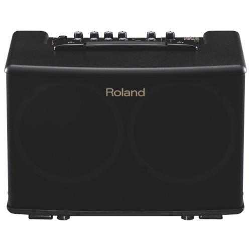 Amplificateur de guitare acoustique de Roland (AC-40)