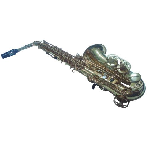 Saxophone alto en cuivre de Nuova avec étui (NAS-3GL) - Cuivre jaune