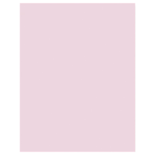 "Sparco 500-Sheet 8.5"" x 11"" Multi-Purpose Paper (SPR05124) - Pink"