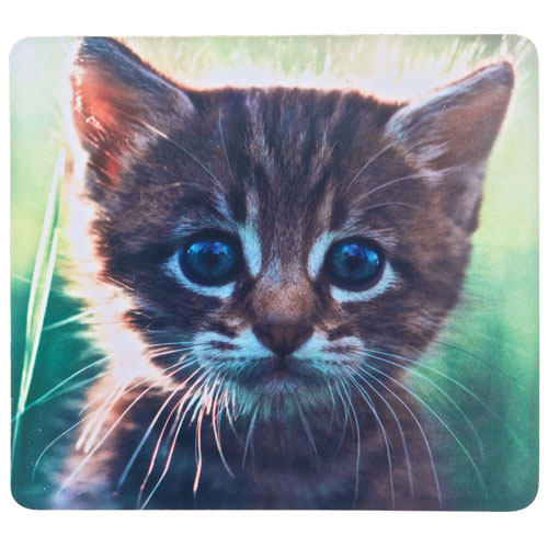 Insignia Mouse Pad - Kitten