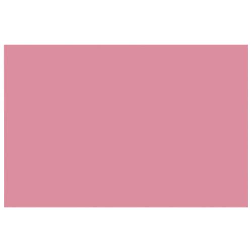 Papier de bricolage épais 12 x 18 po de Nature Saver - Paquet de 50 - Rose