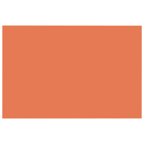 Papier de bricolage de 12 x 18 po de Nature Saver - Paquet de 50 - Orange