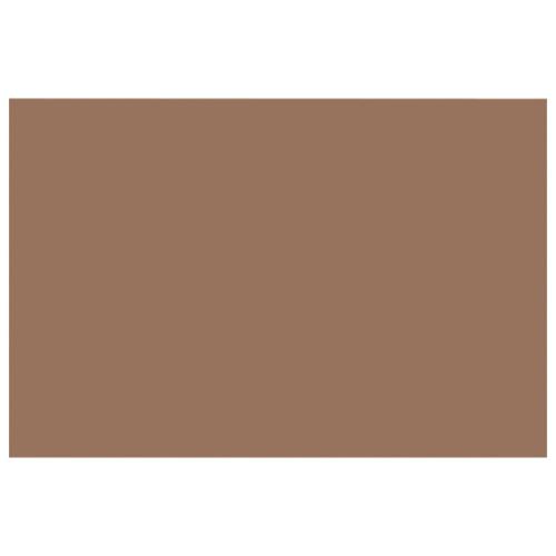 Papier de construction épais 12 x 18 po de Nature Saver - Paquet de 50 - Brun