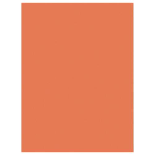 "Nature Saver 9"" x 12"" Heavyweight Construction Paper - 50 Pack - Orange"
