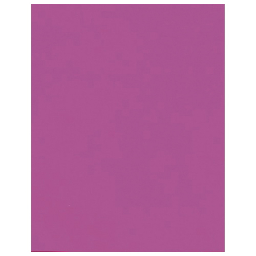 """Hilroy 22"""" x 28"""" Heavyweight Recycled Bristol Board - Fluorescent Pink"""
