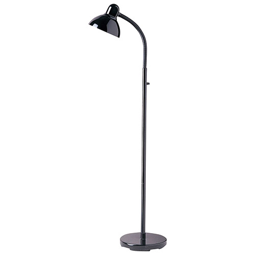 Aurora Lighting Floor Lamp (ECT-DL4238021) - Black