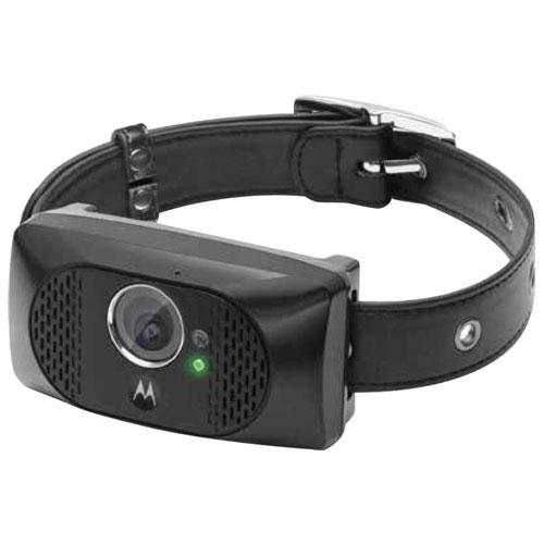 Motorola SCOUT5000 GPS Pet Tracker - Black