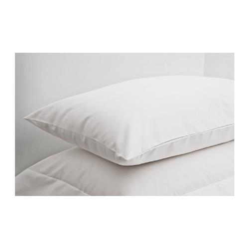 Celebrity Standard size white pillow case 2 pack