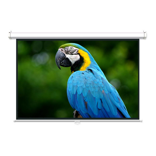 """GlobalTone 106"""" Manual Projection Screen Matte White 16:9 with 1.1 Gain 3D HDTV 1080p Ready"""
