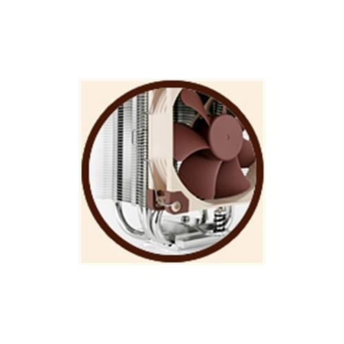 Noctua S2011/1156/1155/1150/AM2+/AM3+/FM1/FM2+ 125mm PWM Fan (NH-U9S)