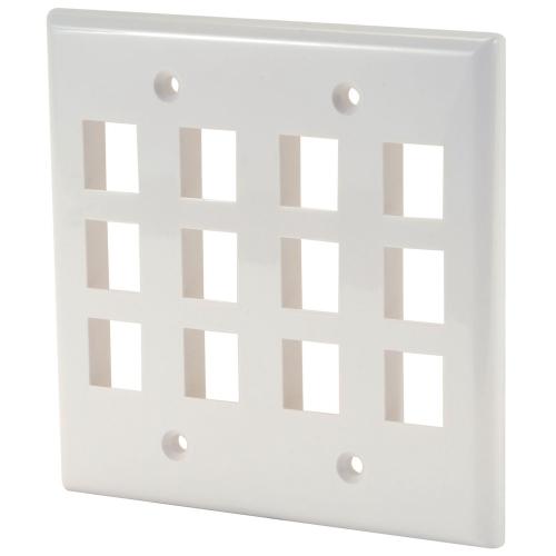 Digiwave Keystone Wall Plate - 12 Slots