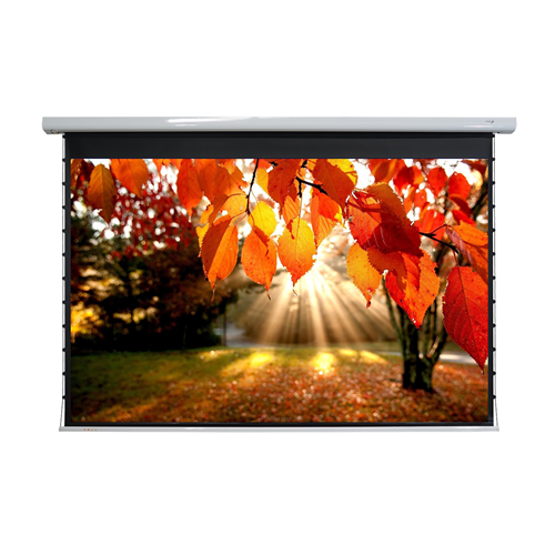 "Elunevision 123"" 16:10 Titan Tab-Tensioned Motorized Projector Screen"