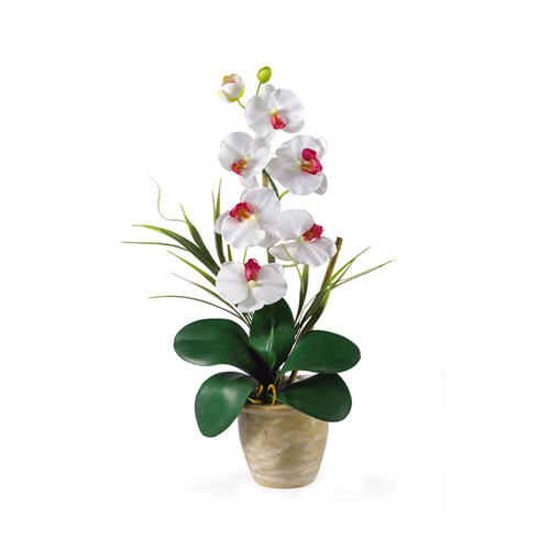Single Stem Phalaenopsis Orchid Silk Flower Arrangementwhite