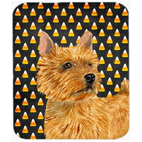 Carolines Treasures SS4292MP Norwich Terrier Candy Corn Halloween Portrait Mouse Pad Hot Pad Or Trivet