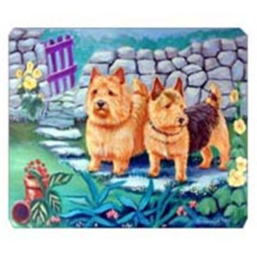 Carolines Treasures 7520MP 8 x 9.5 in. Norwich Terrier Mouse Pad Hot Pad or Trivet