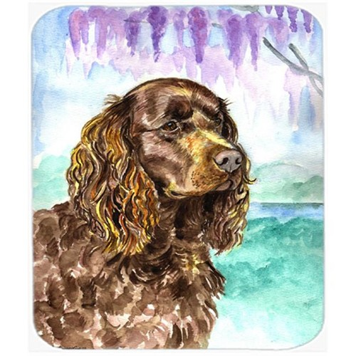 Carolines Treasures 7008MP 9.5 x 8 in. American Water Spaniel Mouse Pad Hot Pad or Trivet