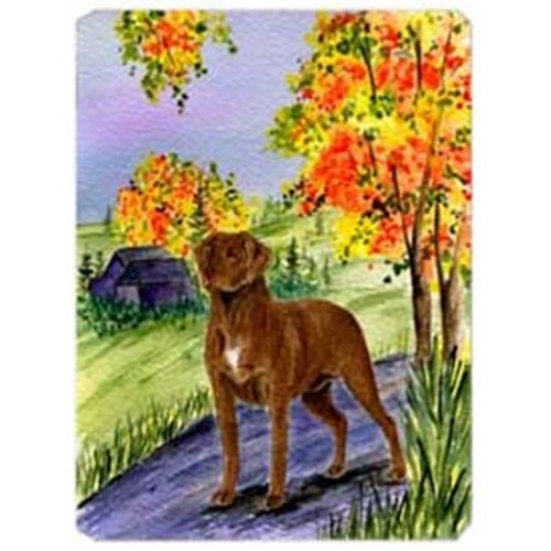 Carolines Treasures SS8427MP Chesapeake Bay Retriever Mouse Pad