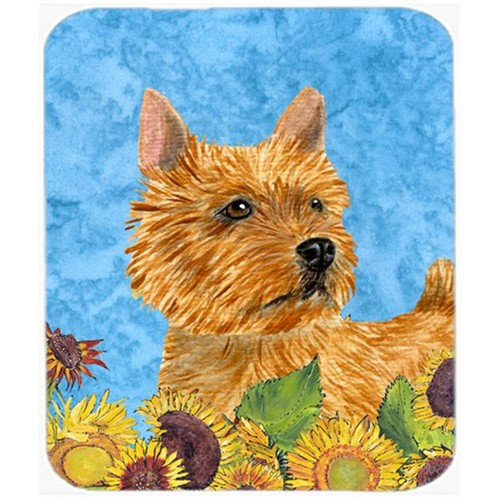 Carolines Treasures SS4132MP Norwich Terrier Mouse Pad Hot Pad or Trivet