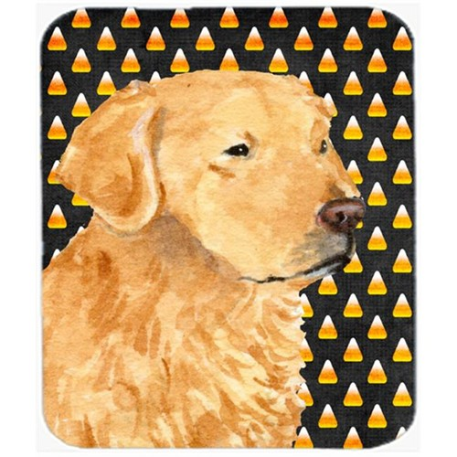 Carolines Treasures SS4269MP Golden Retriever Candy Corn Halloween Portrait Mouse Pad Hot Pad Or Trivet