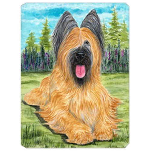 Carolines Treasures SS8035MP Briard Mouse Pad Hot Pad & Trivet