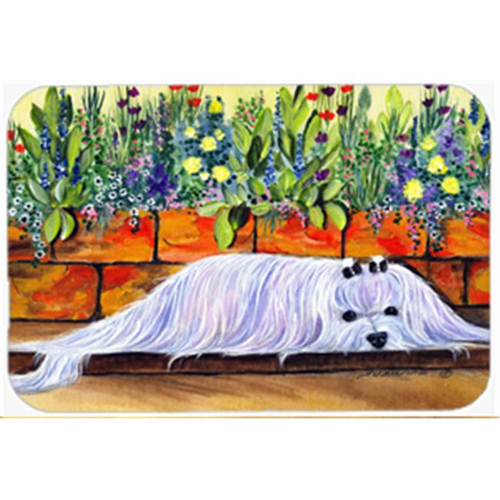 Carolines Treasures SS8248MP Maltese Mouse Pad Hot Pad & Trivet