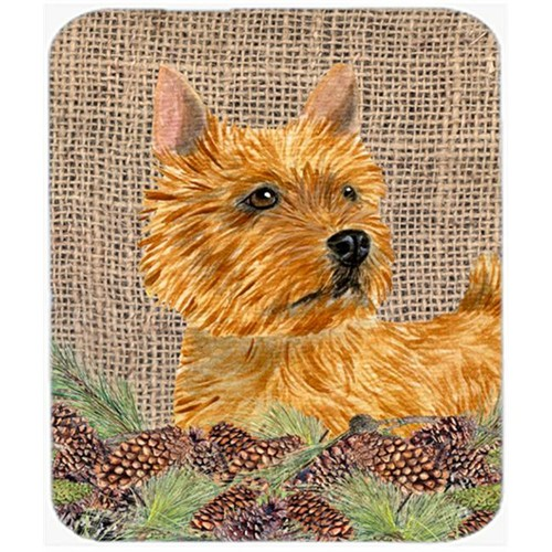 Carolines Treasures SS4088MP Norwich Terrier Mouse Pad Hot Pad Or Trivet