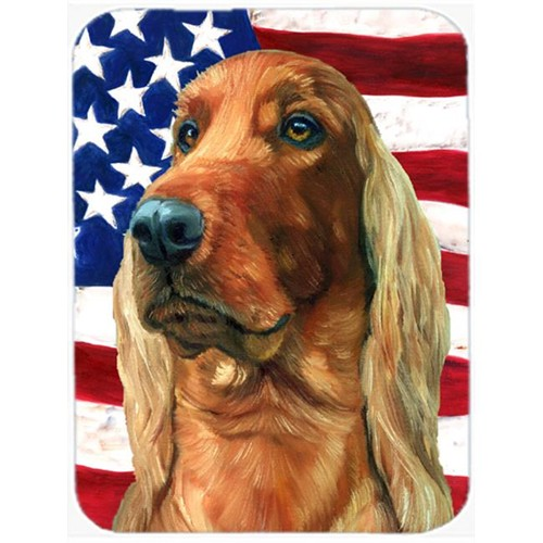 Carolines Treasures LH9541MP Irish Setter Usa Patriotic American Flag Mouse Pad Hot Pad & Trivet