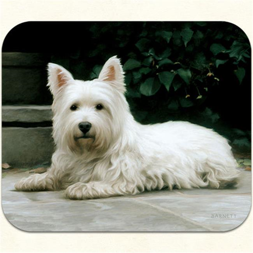 Fiddlers Elbow m15 Westie-Porch Mouse Pad Pack Of 2