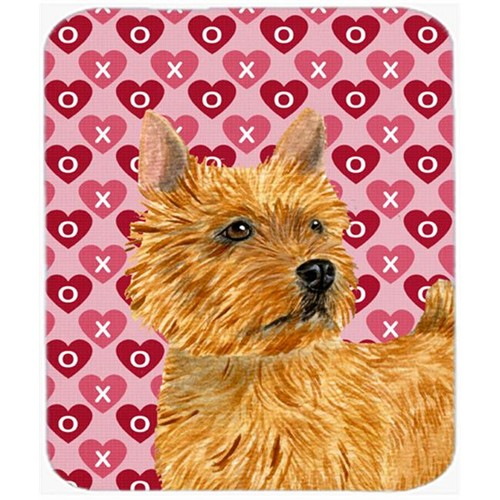 Carolines Treasures SS4499MP Norwich Terrier Hearts Love And Valentines Day Mouse Pad Hot Pad Or Trivet