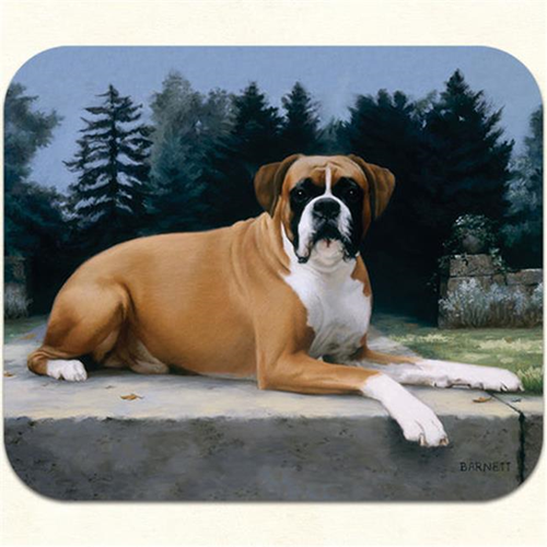 Fiddlers Elbow m12 Boxer-Path Mouse Pad Pack Of 2