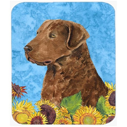 Carolines Treasures SS4165MP Curly Coated Retriever Mouse Pad Hot Pad or Trivet