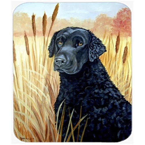 Carolines Treasures 7097MP 9.5 x 8 in. Curly Coated Retriever Mouse Pad Hot Pad or Trivet