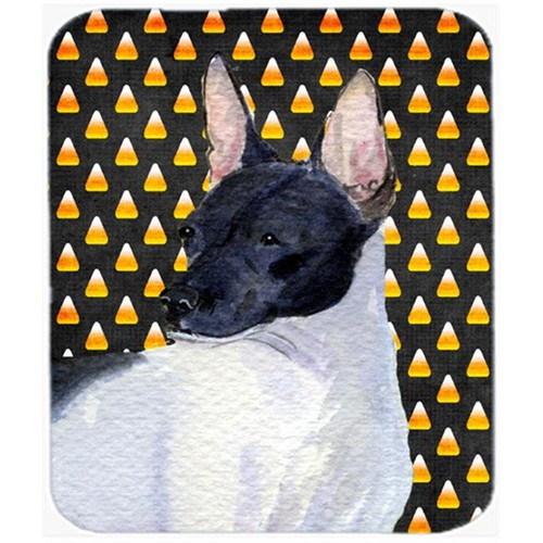 Carolines Treasures SS4273MP Rat Terrier Candy Corn Halloween Portrait Mouse Pad Hot Pad Or Trivet
