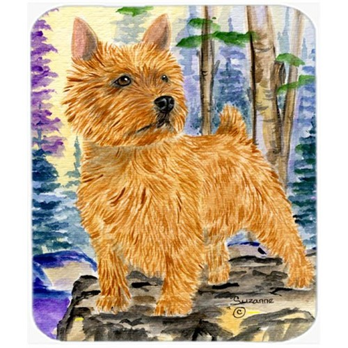 Carolines Treasures SS8011BMP Norwich Terrier Mouse Pad Hot Pad or Trivet