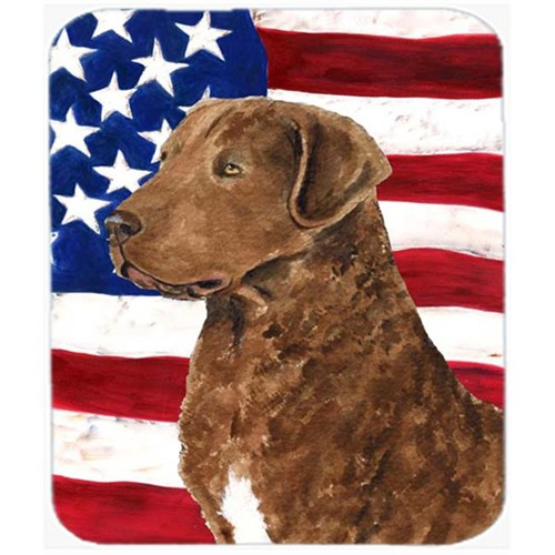 Carolines Treasures SS4016MP Usa American Flag With Curly Coated Retriever Mouse Pad Hot Pad Or Trivet