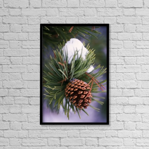 """Printscapes Wall Art: 12"""" x 18"""" Canvas Print With Black Frame - Nature by Natural Selection Craig Tuttle"""