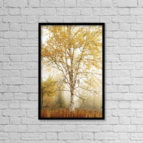"Printscapes Wall Art: 12"" x 18"" Canvas Print With Black Frame - Birch Trees In Autumn by Susan Dykstra"