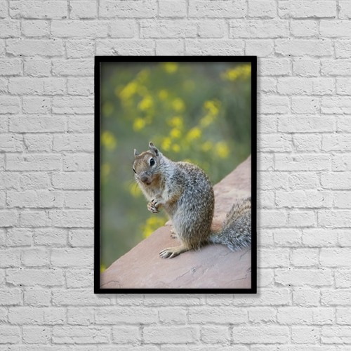 "Printscapes Wall Art: 12"" x 18"" Canvas Print With Black Frame - Animals by Richard Maschmeyer"