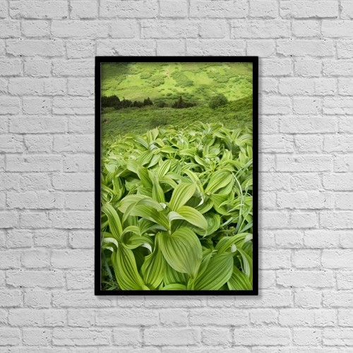 "Printscapes Wall Art: 12"" x 18"" Canvas Print With Black Frame - Nature by Carl R. Battreall"