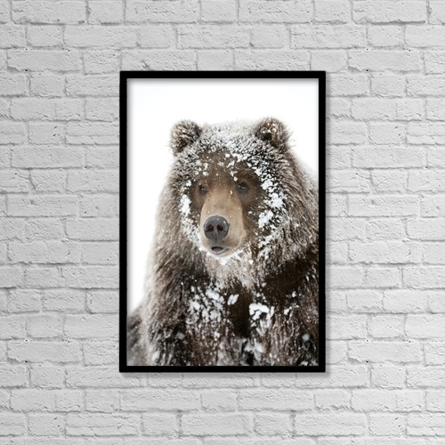 "Printscapes Wall Art: 12"" x 18"" Canvas Print With Black Frame - Animals by Doug Lindstrand"