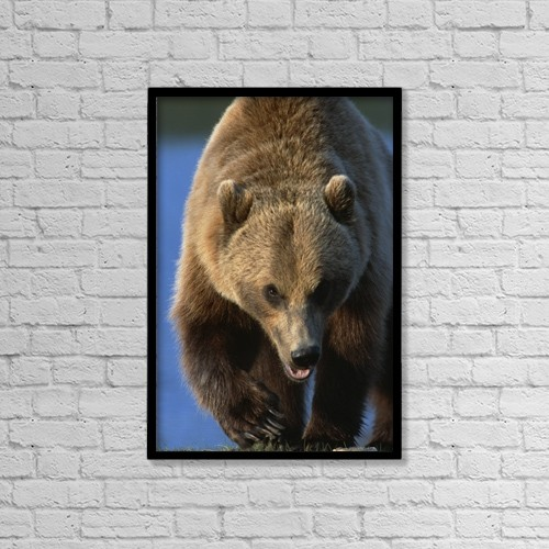 "Printscapes Wall Art: 12"" x 18"" Canvas Print With Black Frame - Sports and Recreation by Doug Lindstrand"
