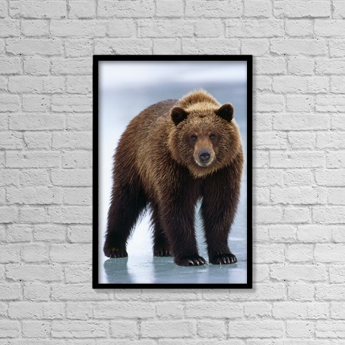 """Printscapes Wall Art: 12"""" x 18"""" Canvas Print With Black Frame - Animals by Doug Lindstrand"""