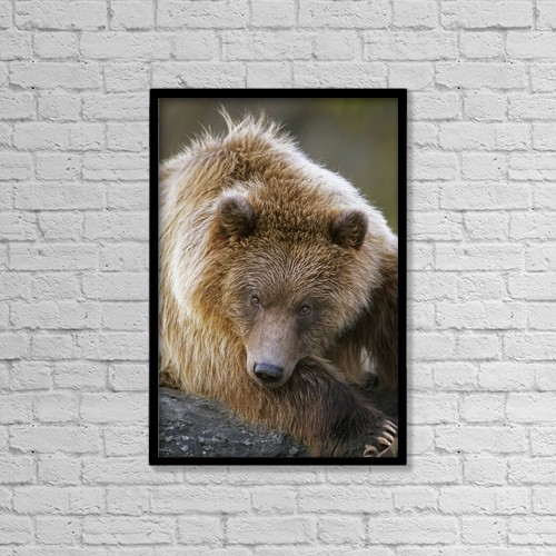 """Printscapes Wall Art: 12"""" x 18"""" Canvas Print With Black Frame - Sports and Recreation by Doug Lindstrand"""